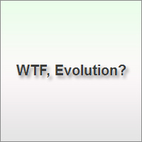 WTF, Evolution? is a blog honoring natural selection's most baffling creations in a ridiculous way, but it will also make you gape in awe.